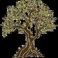 olivetree_goulas_res